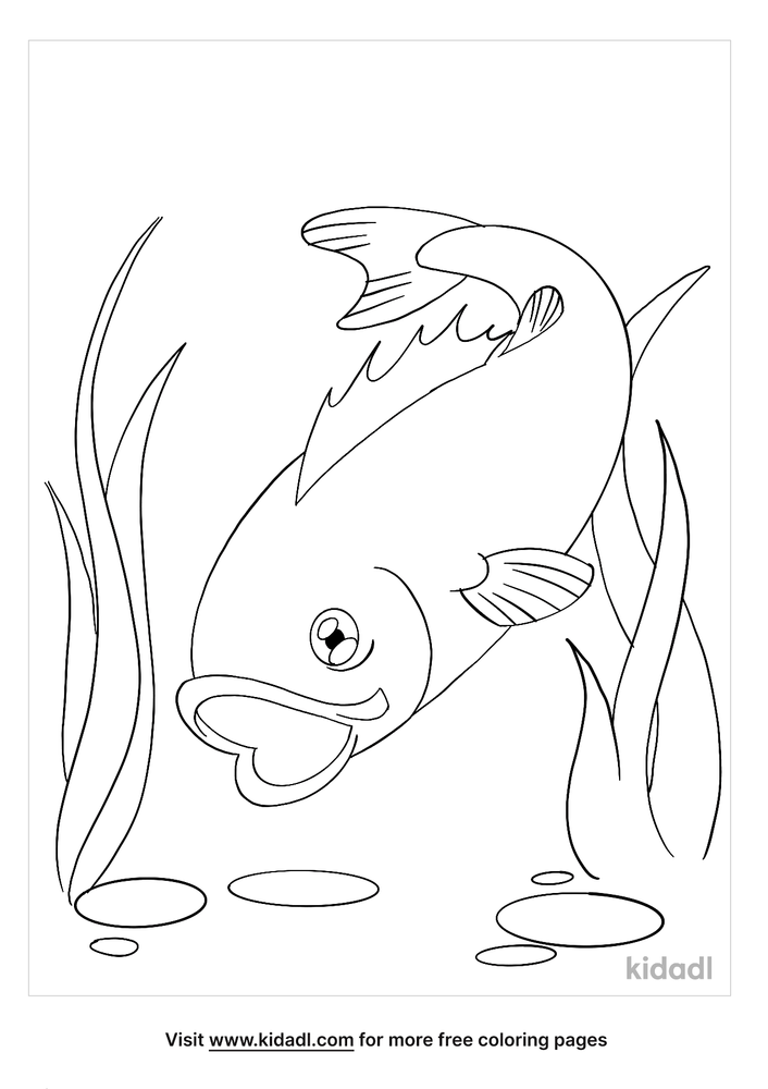 Bass Coloring Pages Free Fish Coloring Pages Kidadl